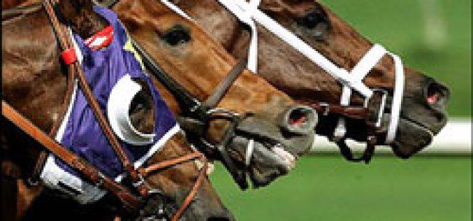 Japão – Corridas de Cavalos canceladas